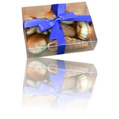 Boxed Seashell Chocolates