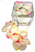 Floating Rose Petals x 30