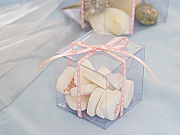 Clear Favour Boxes - set of 100