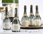Champagne Bottle Bubbles